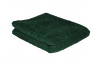HAIR TOOLS TOWEL BOTTLE GREEN